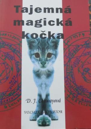 Tajemná, magická kočka