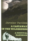 A castaway in the wilderness